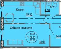 1 комнатная квартира 55,6 кв. м